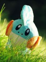 A Wild Mudkip Appeared! by Theanimalparade