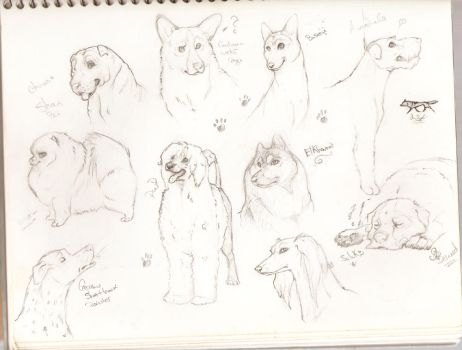 Sketch Book Dog Misc by tailfrost