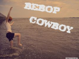 Cowboy Bebop: A Genre Unto Itself by SethImmortal
