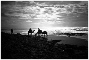 Camels and the Silver Sea by SantiBilly