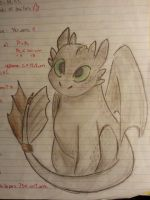 Toothless by Hayane-chan-SNP