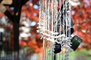 Fall 09 by Herr-LASHER