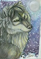 ACEO-Cally-Dream by itsmar