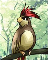 PIDGEOTTO omg by licchan