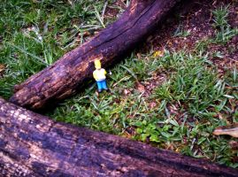 Homer in wild forest by Lazlo-Moholy