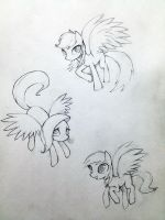 Pegasi Sketch 01 by murphylaw4me