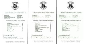 OWL results letters- Harry, Ron and Hermione by decat
