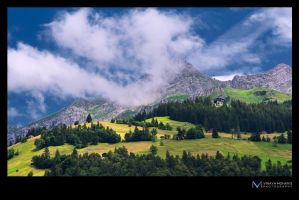 Switzerland rsf by vinayan