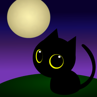 Midnight Kitty by amis0129