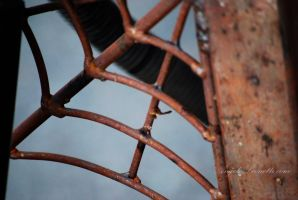 Rusty Spider Web by AngelaLeonetti