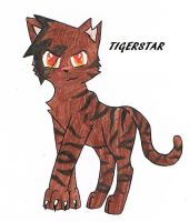 5. Tigerstar by bro-palmer
