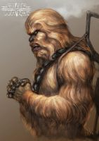 Chewy by Inton