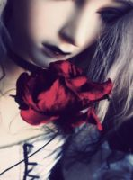 Red roses suit you so well by subarud