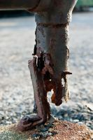 Rusted Pipe by shamic2011