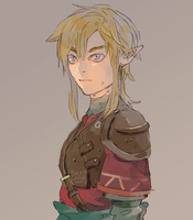 LoZ: Red Tunic by saltycatfish