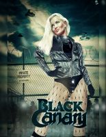 Black Canary version 2 by NO-LooK-PaSS