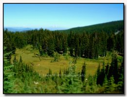 Elk Cove in Miniature by LoneWolfPhotography