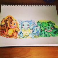 Pokemon gen 1 starters by cinnamonquibble