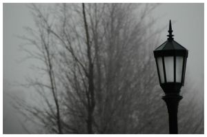 Streetlight 1 by Arcanacaries