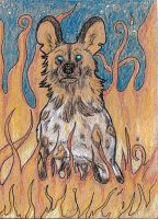 Awd ACEO by Dalkur