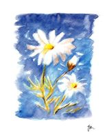 Two Dandy Daisies by Jacia