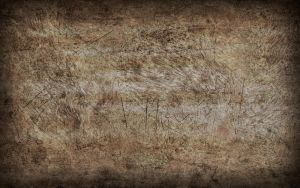Grunge Texture Brown II by f-i-l-p