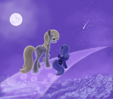 Trail of moonlight by grayma1k