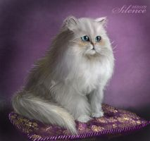 Persian cat by Tashati