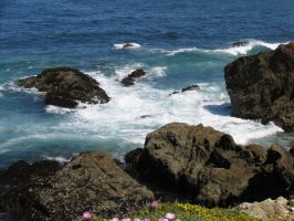 Mendocino Shore I by Cynnalia-Stock