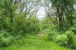 green path by blondfae69