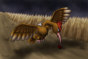 022 Fearow by PokeGirl5