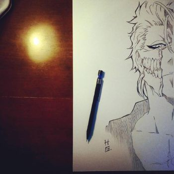 Remember my name! (Grimmjow-Bleach) by hudaim