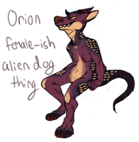Orion by pitbullie