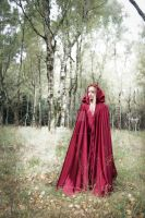 Fairytale Forest Self-Portrait IV by MiriamPeuser