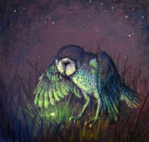 Owl and Firefly by hibou-caillou