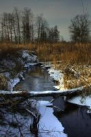 Frozen river 2 by mateuszskibicki1