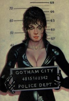 Catwoman by somersetholmes