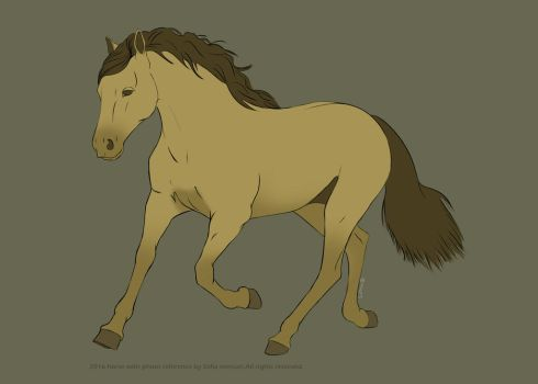 Horse sketch with photo reference. by sofmer