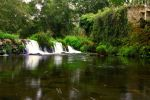 Green Falls by booster84