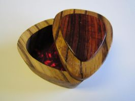 Zebrawood and cocobolo pick box1 by DMSscroller