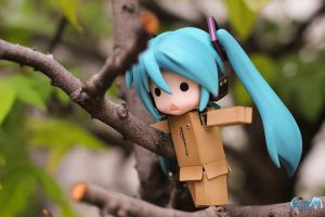 Walking on the tree branch by nendonesia