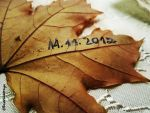 11.11.2012 Autumn leaf by RazviNc