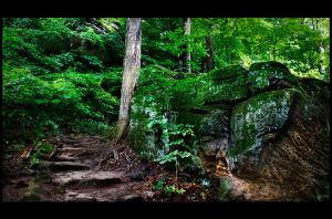 whipps ledges by BillyRWebb