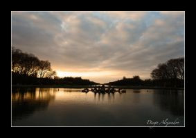 Versailles sunset by xanderking