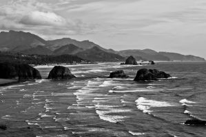 Oregon Coast Black and White by rwlux83