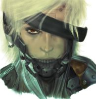 Raiden by cheesyporridge2121