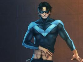 NightWing - LS by Cris-Art
