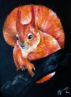Fire Squirrel by Sam-in-Motion