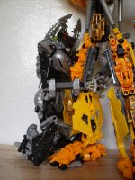 Mata Nui fans close up 1 by BioMutt70