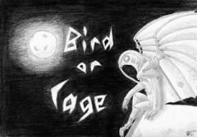 bird or cage by Okiro13
